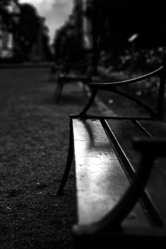 Bench In Soder (87 of 365)