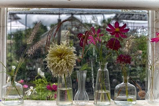The Empty Vase (201 of 365)